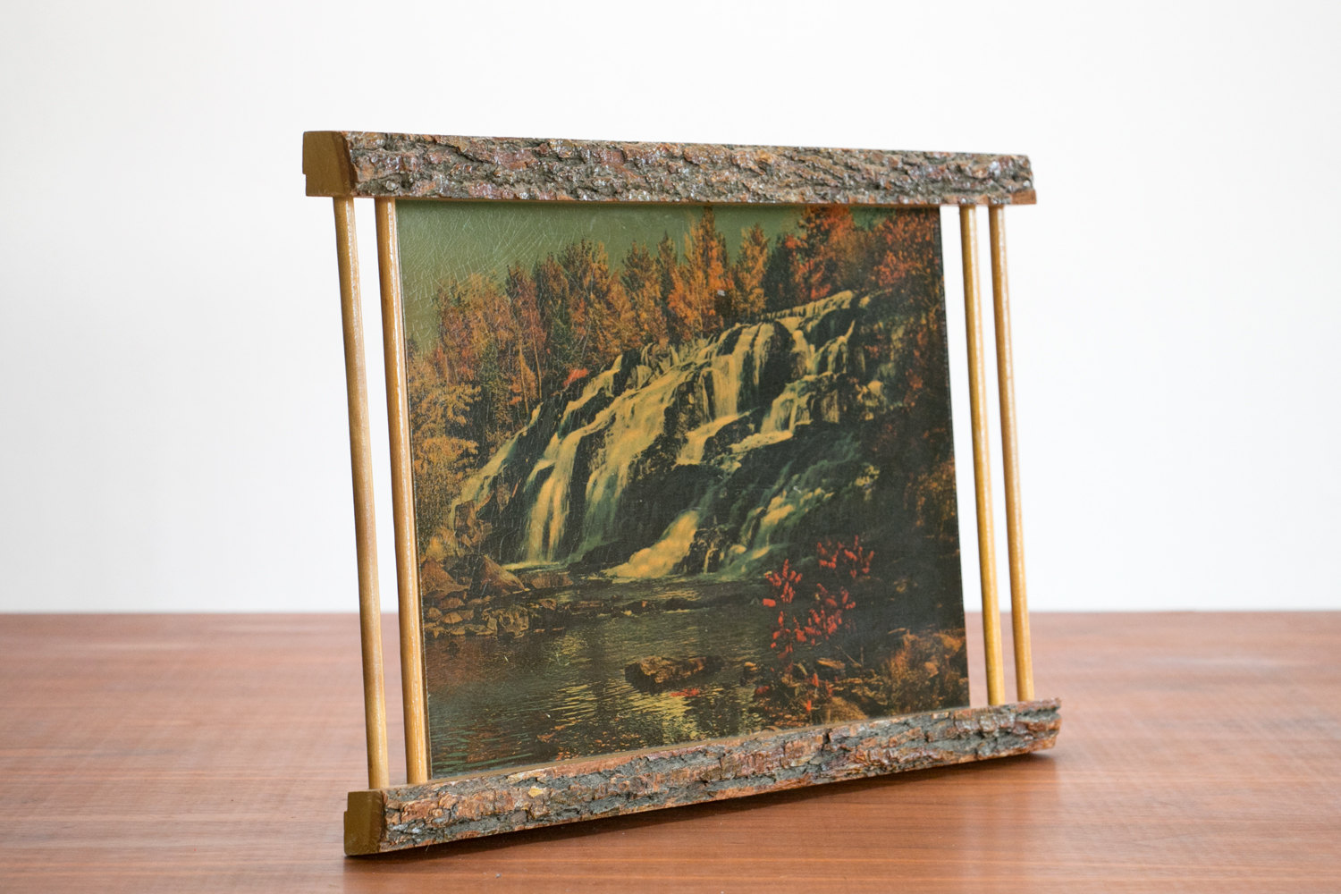 Vintage 1950's Mid Century Waterfall Photographic Print with Wood Bark Frame // Rustic, Modern, Hipster, Art, Americana, National Parks